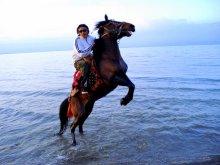 Qinghai Lake Nomads