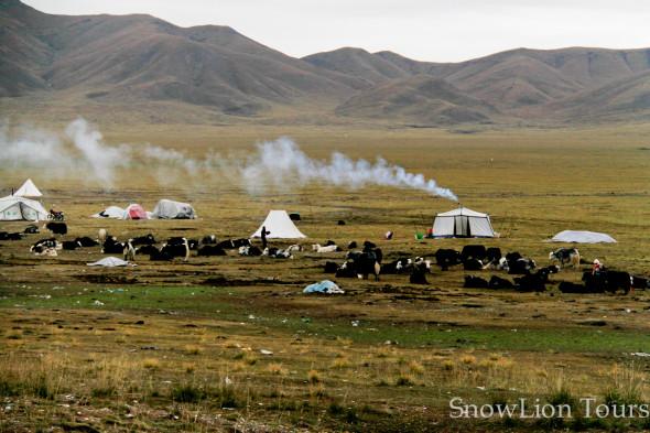 Golok Tibetan nomads